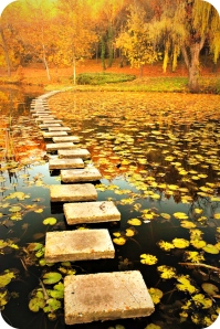 Where-theres-a-Will-theres-a-Way-Easy-Branches